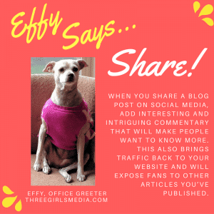 As Effy says, make sure you promote the content you create.
