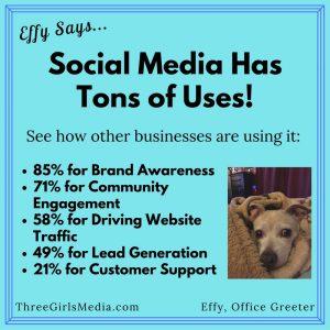 How do businesses use social media
