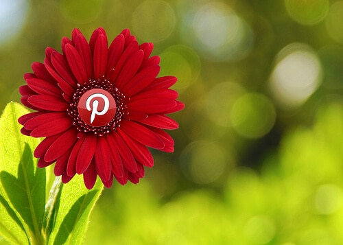 Research shows that Pinterest pins have a better chance of driving future sales than many other  social media platforms.
