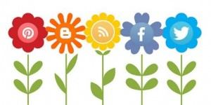 Is your website socialized?