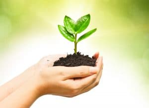 social responsibility for business