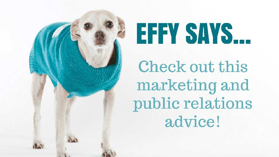 Effy Says…Work Smarter, Not Harder – Repurpose Your Blog Posts!