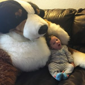 A picture of a baby with a giant stuffed dog.