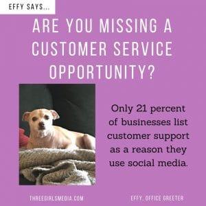 Effy Says Image