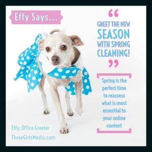 Effy Says... spring clean your marketing strategy!