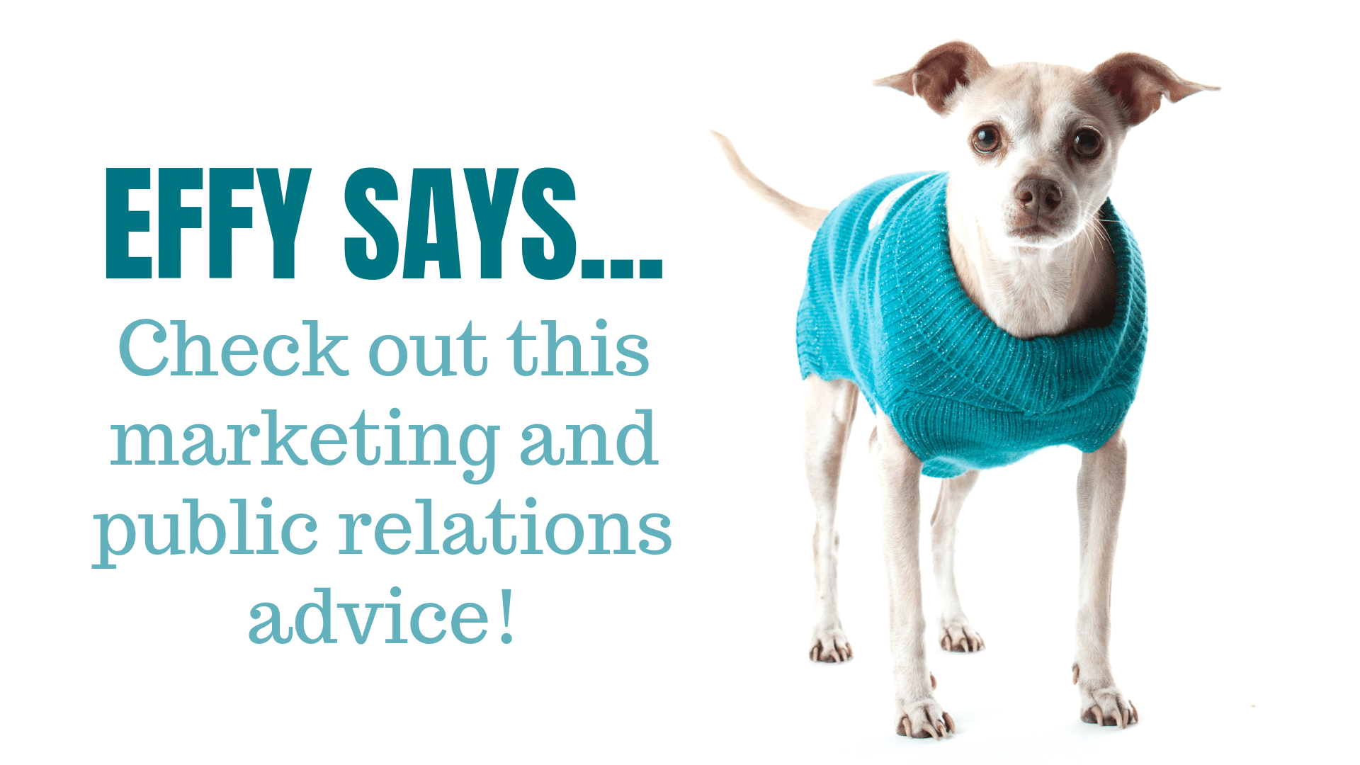 Effy Says…Keep Extra Space from Invading Your Website Copy!