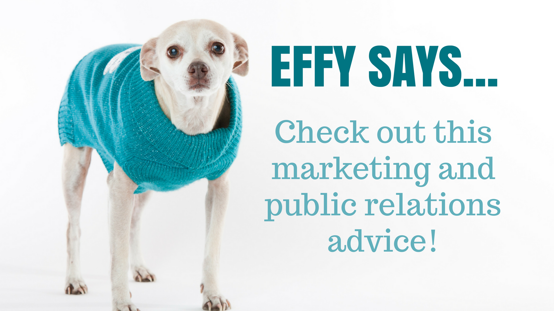 Effy Says… Create A Content Calendar & Stick To It!