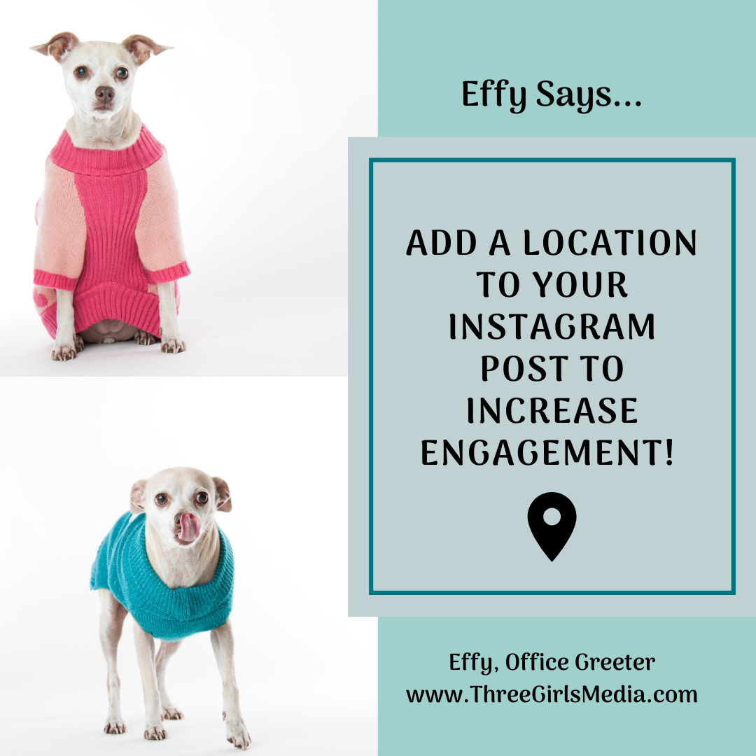 Effy Says… Tag Locations In Your Instagram Posts!