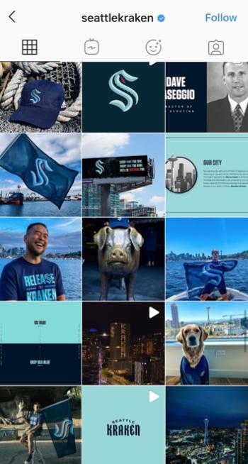 A screenshot of Seattle Kraken's Instagram page
