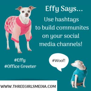 Effy Says Use Hashtags