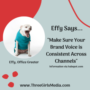Effy Says Have a Consistent Voice