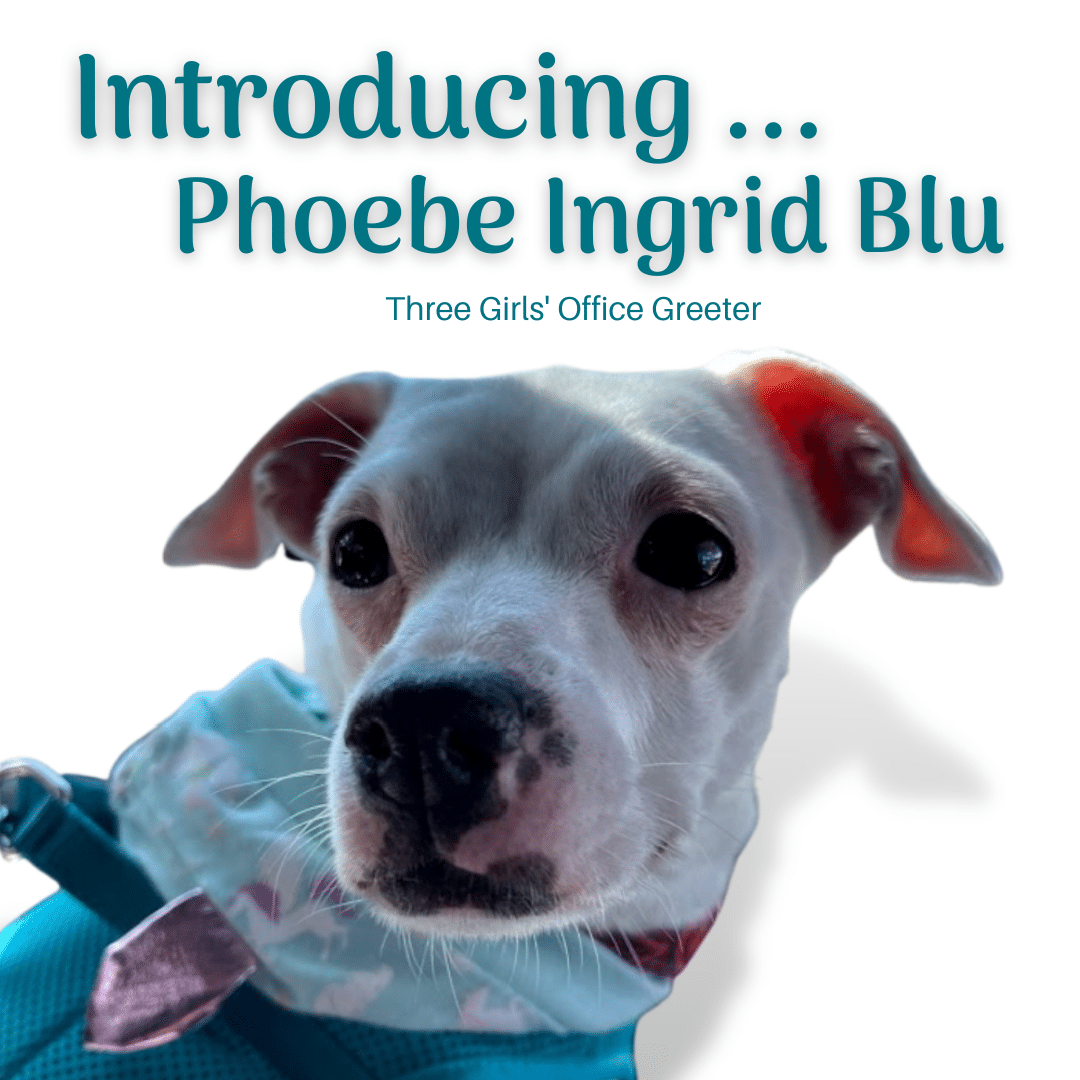 Phoebe Says … I Can't Wait to Greet You!