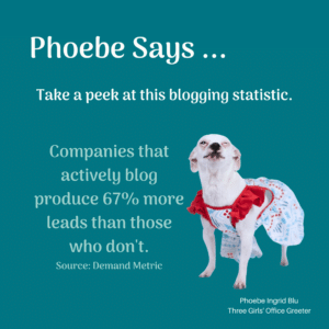 Phoebe gives blogging advice text