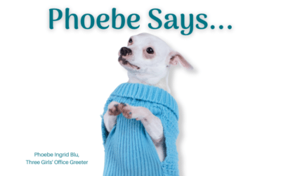 Phoebe Says … Don't Bore Your Audience On Social Media